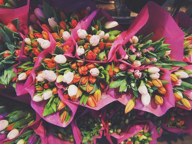 Színes tulipáncsokrok.