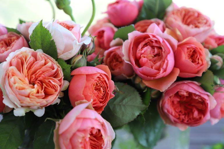 Menyasszonyi rózsacsokor.